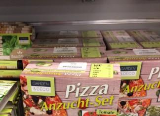 Pizza Anzuchtset